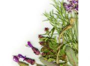 Uleiurile esentiale – ingrijire aromata