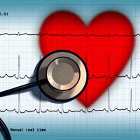 80% dintre cazurile de boli cardiovasculare, provocate de alimentatia nesanatoasa, sedentarism si fumat