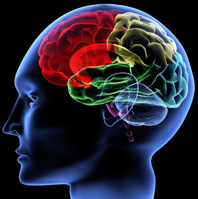Oboseala mentala afecteaza rezistenta fizica