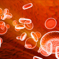 S-au descoperit celulele care pastreaza pacea in sistemul imunitar