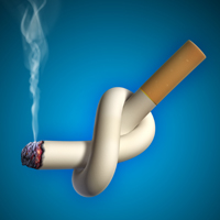 Un singur trabuc poate contine nicotina existenta intr-un pachet de tigari