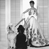 Givenchy – Etalonul elegantei