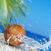 Beneficiile apei de cocos
