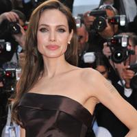 Angelina Jolie neaga ca ar fi copiat scenariul filmului sau
