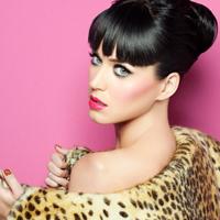 """Katy Perry a refuzat propunerea producatorilor de la """"X Factor"""""""