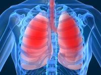 Astmul la copii poate fi provocat de prezenta mucegaiului in case