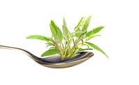 Legumele cu frunze verzi, recomandate impotriva aparitiei mai multor boli