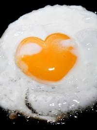 Consumul de galbenus de ou, aproape la fel de daunator precum fumatul
