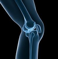 Tehnologia care identifica bolile din fragmentele de os