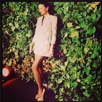 Miranda Kerr, superba in creatia cu imprimeu semnata Louis Vuitton