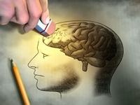 Teoriile marilor psihologi despre dezvoltarea personalitatii