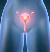 Cele mai bune leacuri impotriva infectiilor urinare