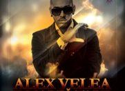 Despre stil… cu Alex Velea