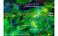 Insomniile… de altadata