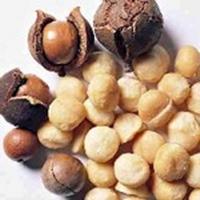 Nuci Macadamia