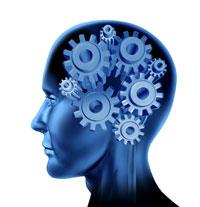 Creierul detine propriul sau sistem GPS