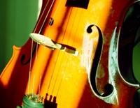 Ansamblul Musica Viva