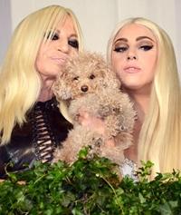 Lady Gaga, imaginea Versace?