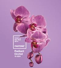 Institutul Pantone ne dezvaluie culoarea anului 2014