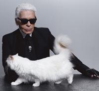 Karl Lagerfeld, colectie-capsula inspirata de pisica sa