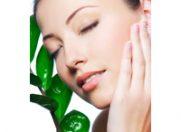 Linia GreenStem de la Cosmetic Plant, cadoul meu de Mos Craciun !