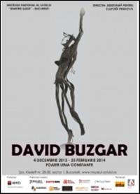 Expozitie David Buzgar