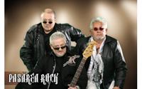 Concert Pasarea Rock