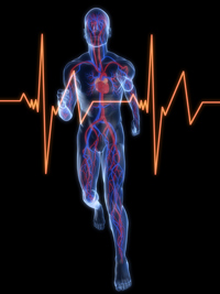 Lipsa activitatii fizice creste riscul de insuficienta cardiaca