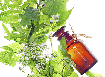 Utilizarea plantelor medicinale: de la inceputuri si pana astazi