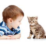 Copilul tau tolereaza frustrarea?