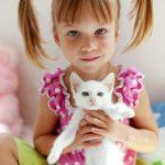 5 lectii pe care le putem invata de la animale