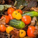 Alimente care ajuta la producerea de colagen