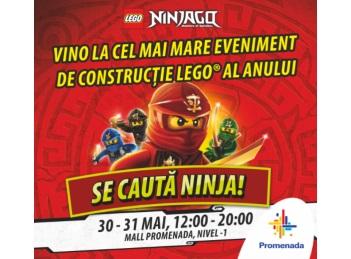 Ziua Copilului, sarbatorita cu jocuri Lego