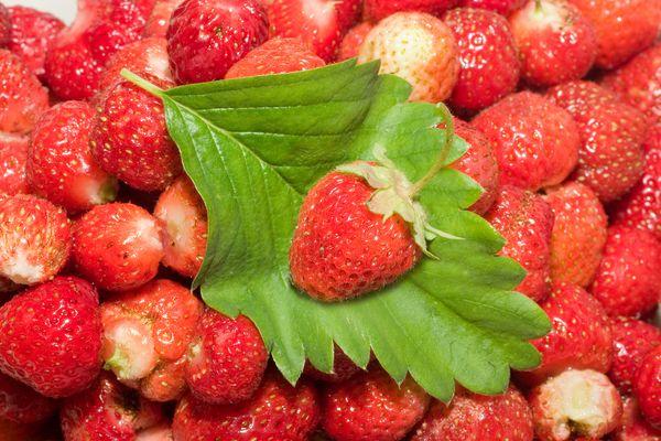 Fructe care te ajuta sa slabesti + fructe care ingrasa! - Pudra Mangosteen în România
