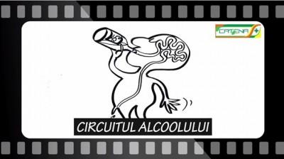CIRCUITUL ALCOOLULUI Ep.18