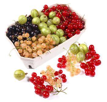 Topul fructelor bogate in antioxidanti