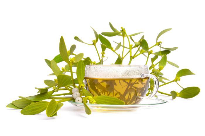 Beneficiile ceaiului de vasc, leacul minune al iernii