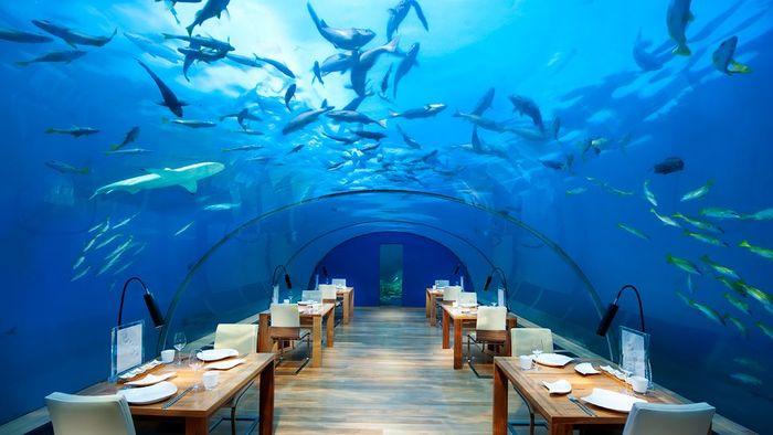 Top 5 atractii turistice subacvatice