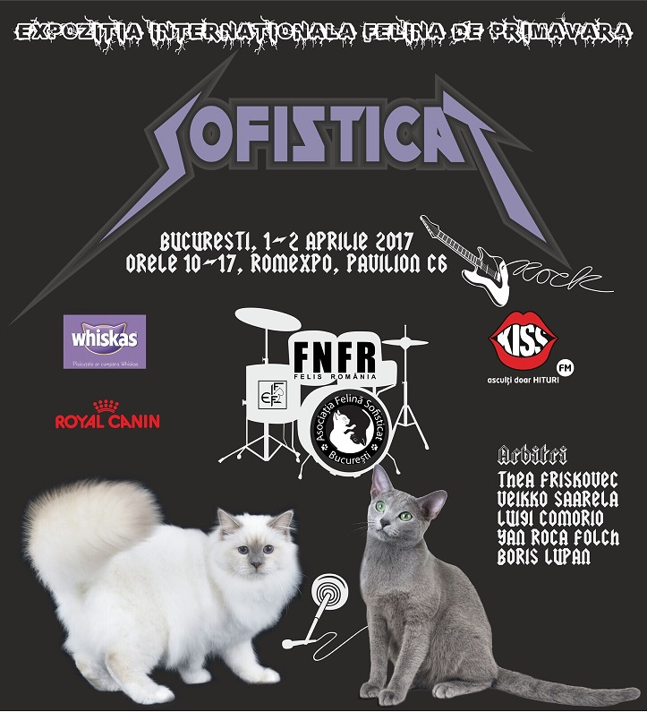 Weekend SofistiCAT pentru iubitorii de pisici: ce surprize te asteapta la Expozitia Felina Internationala de Primavara