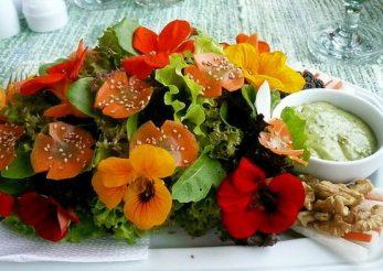 Aceste flori sunt comestibile! Iata ce retete delicioase se pot prepara si cate beneficii aduc sanatatii!