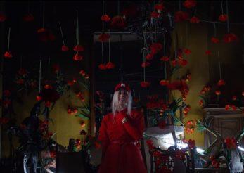 "200 de maci apar in videoclipul ""Floare delicata"", lansat de Adda"