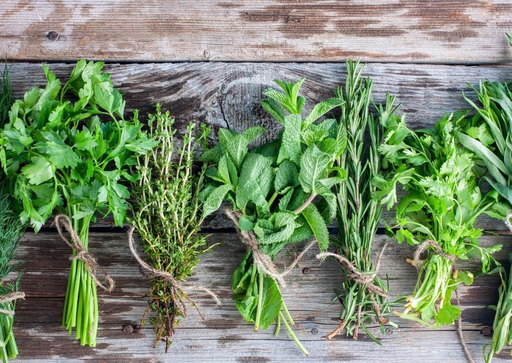 Plante aromatice pe care le poti creste in casa