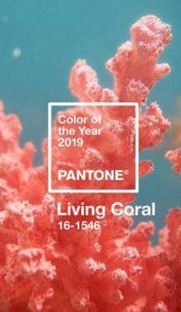 Culoarea anului 2019, aleasa de Institutul Pantone