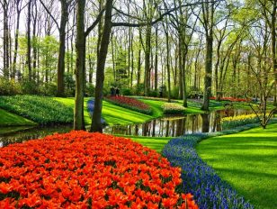 Vezi cum arata cele mai frumoase gradini din Europa