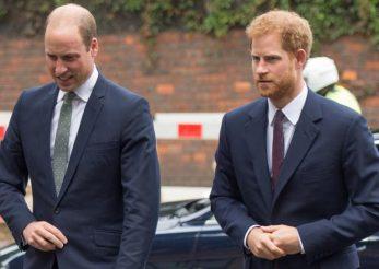 """Prințul Harry și Prințul William – """"plini de furie și resentimente"""" după Megxit"""