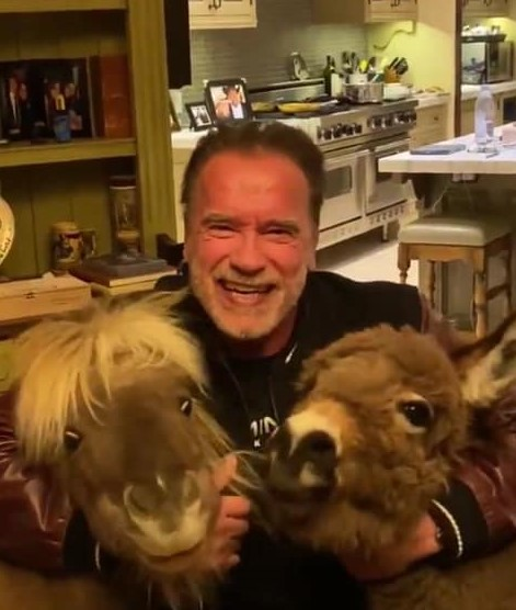 Arnold Schwarzenegger ne recomandă să stăm în casă