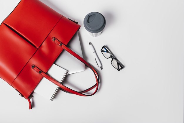Cum arată geanta Hermes în valoare de 220 de mii de euro