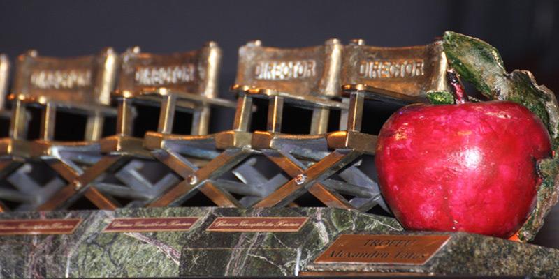 A apărut lista nominalizărilor la gala UCIN 2020